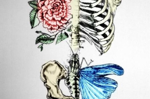 butterflies poem